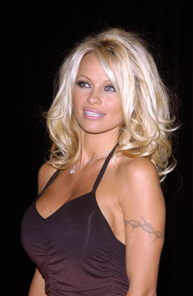 Pamela Anderson is listed (or ranked) 1 on the list Famous Female Nude  Glamour