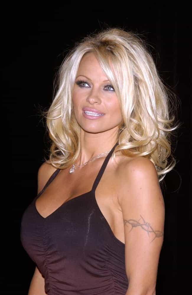 Pamela Anderson is listed (or ranked) 2 on the list 15 Famous People Who Have Joined The Mile High Club