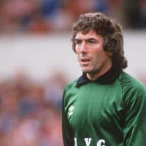 Pat Jennings is listed (or ranked) 12 on the list The Best Tottenham Hotspur Players of All Time