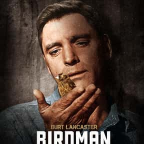 Birdman of Alcatraz is listed (or ranked) 17 on the list The Greatest Prison Shows & Movies of All Time
