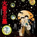 Grave of the Fireflies is listed (or ranked) 17 on the list Animated Movies That Make You Cry the Most