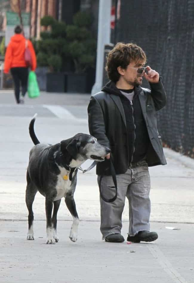 Peter Dinklage is listed (or ranked) 4 on the list The Best Photos of Celebrities Walking Their Dogs