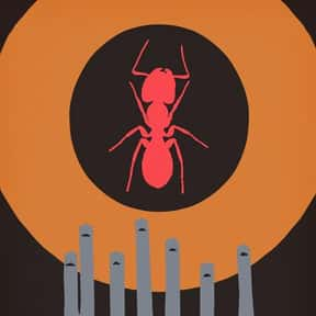 Phase IV is listed (or ranked) 10 on the list The Best Horror Movies About Killer Insects
