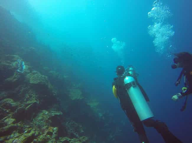 Philippines is listed (or ranked) 2 on the list The Best Countries for Scuba Diving
