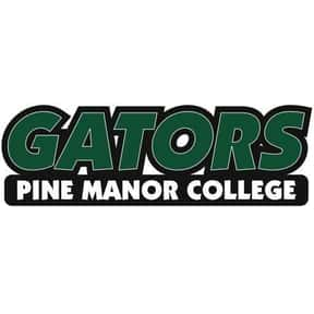 Pine Manor College is listed (or ranked) 2 on the list Gator Mascot School List