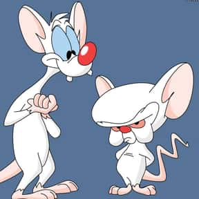 Pinky and the Brain is listed (or ranked) 20 on the list The Greatest Cartoon Theme Songs of All Time