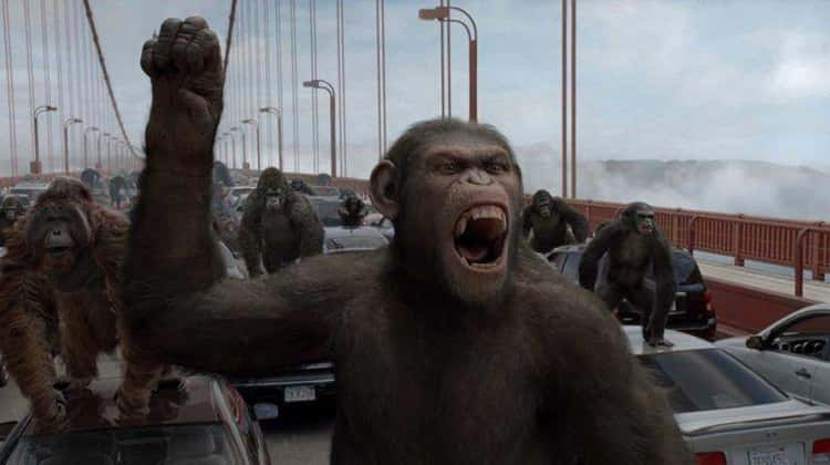 Capricorn: Planet of the Apes
