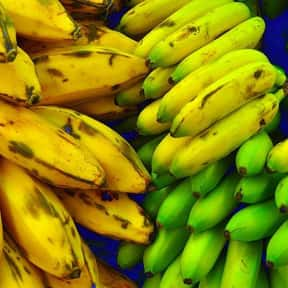 Plantain is listed (or ranked) 18 on the list The Best Tropical Fruits