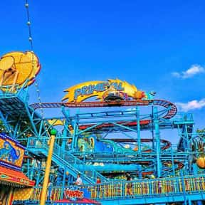 Primeval Whirl is listed (or ranked) 19 on the list The Worst Amusement Park Rides To Get Stuck On