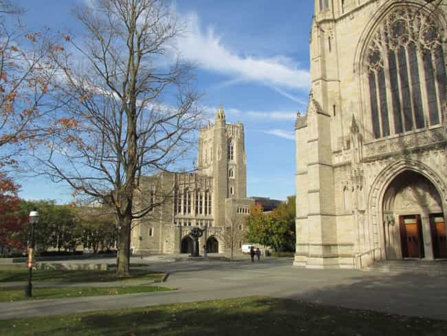 Princeton University is listed (or ranked) 2 on the list All Ivy League Colleges Ranked