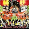 Projects in the Jungle is listed (or ranked) 8 on the list The Best Pantera Albums of All Time