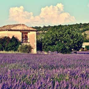 Provence is listed (or ranked) 5 on the list Best Couples Vacation Destinations & Anniversary Trips