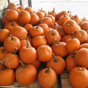 Pumpkin is listed (or ranked) 7 on the list Vegetables That Are Technically Fruits