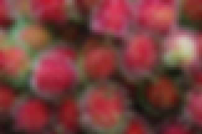 Rambutan is listed (or ranked) 3 on the list The World's Weirdest Fruits