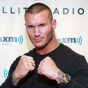 Randy Orton is listed (or ranked) 10 on the list TV Actors from St. Louis