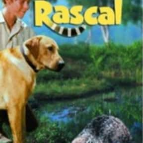 Rascal is listed (or ranked) 15 on the list The Best Wisconsin Movies