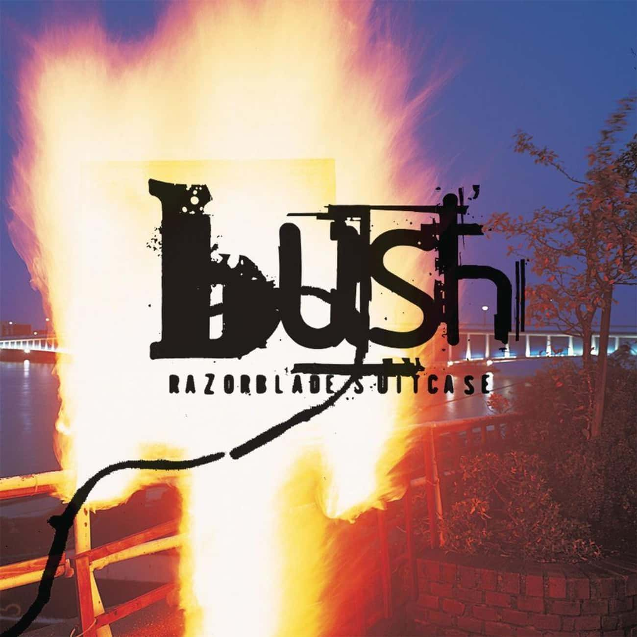 Razorblade Suitcase is listed (or ranked) 2 on the list The Best Bush Albums of All Time