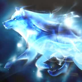 Remus Lupin - Wolf