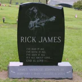 Rick James is listed (or ranked) 7 on the list Famous People Whose Last Name Is James