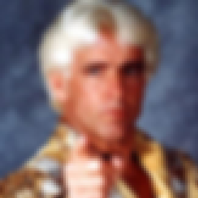 Ric Flair is listed (or ranked) 7 on the list The Top Five WWE Superstars Who Won The Highest Number of Titles