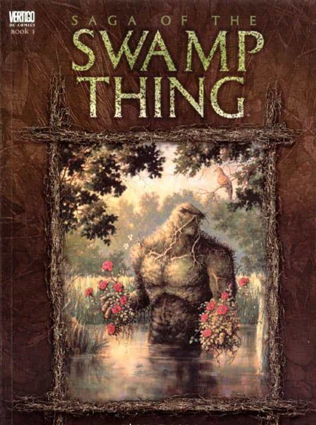 Saga of the Swamp Thing is listed (or ranked) 3 on the list Comic Books That Would Make Great Cartoons