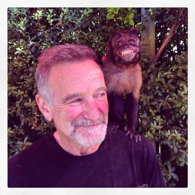 Robin Williams is listed (or ranked) 6 on the list The Last Known Photos of 52 Famous People