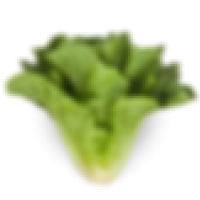 Romaine lettuce is listed (or ranked) 1 on the list 21 Types of Lettuce, Ranked Best to Worst