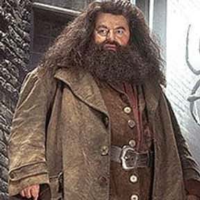 Rubeus Hagrid is listed (or ranked) 3 on the list The Greatest Harry Potter Characters, Ranked