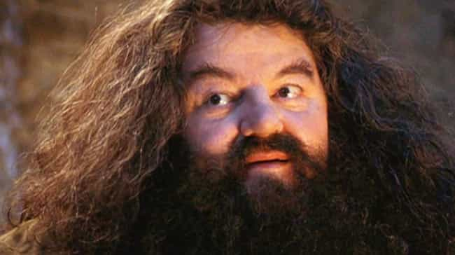 Rubeus Hagrid is listed (or ranked) 1 on the list The Best Old Man Bushy Beards in Pop Culture