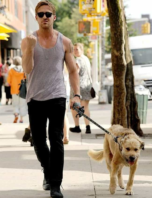 Ryan Gosling is listed (or ranked) 6 on the list The Best Photos of Celebrities Walking Their Dogs