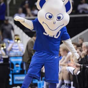 Saint Louis University is listed (or ranked) 11 on the list Universities With The Dumbest College Mascots