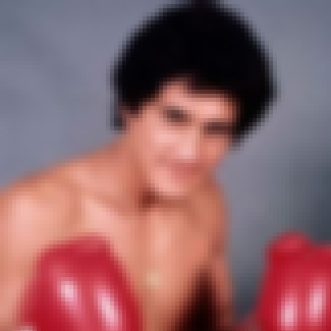 Salvador Sánchez is listed (or ranked) 4 on the list The Best Hispanic Boxers of All Time