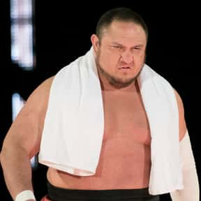 Samoa Joe is listed (or ranked) 14 on the list The Best Current Wrestlers in the WWE